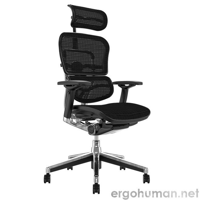 Ergohuman Elite Office Chair